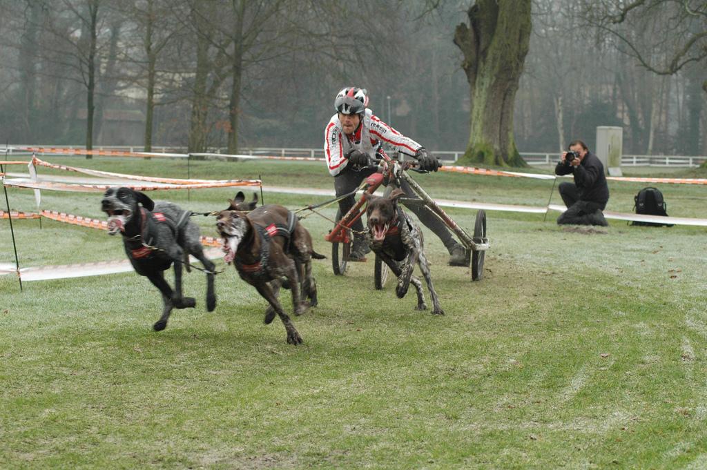 igor tracz kross racing team rafał reszke zaprzęg