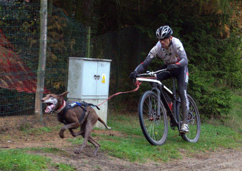 igor tracz kross racing team rafał reszke