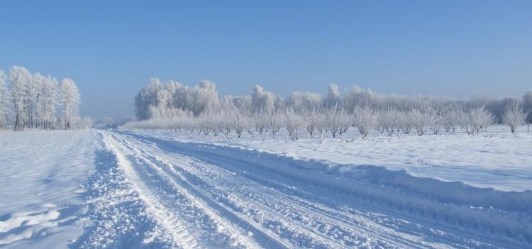 Kalendarzowy updejt – winter strikes back?