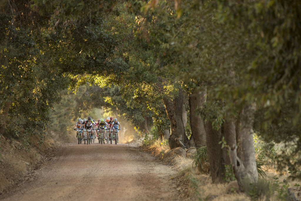 The ladies peloton during stage 1 of the 2016 Absa Cape Epic Mountain Bike stage race held from Saronsberg Wine Estate in Tulbagh, South Africa on the 14th March 2016Photo by Sam Clark/Cape Epic/SPORTZPICSPLEASE ENSURE THE APPROPRIATE CREDIT IS GIVEN TO THE PHOTOGRAPHER AND SPORTZPICS ALONG WITH THE ABSA CAPE EPIC{ace2016}