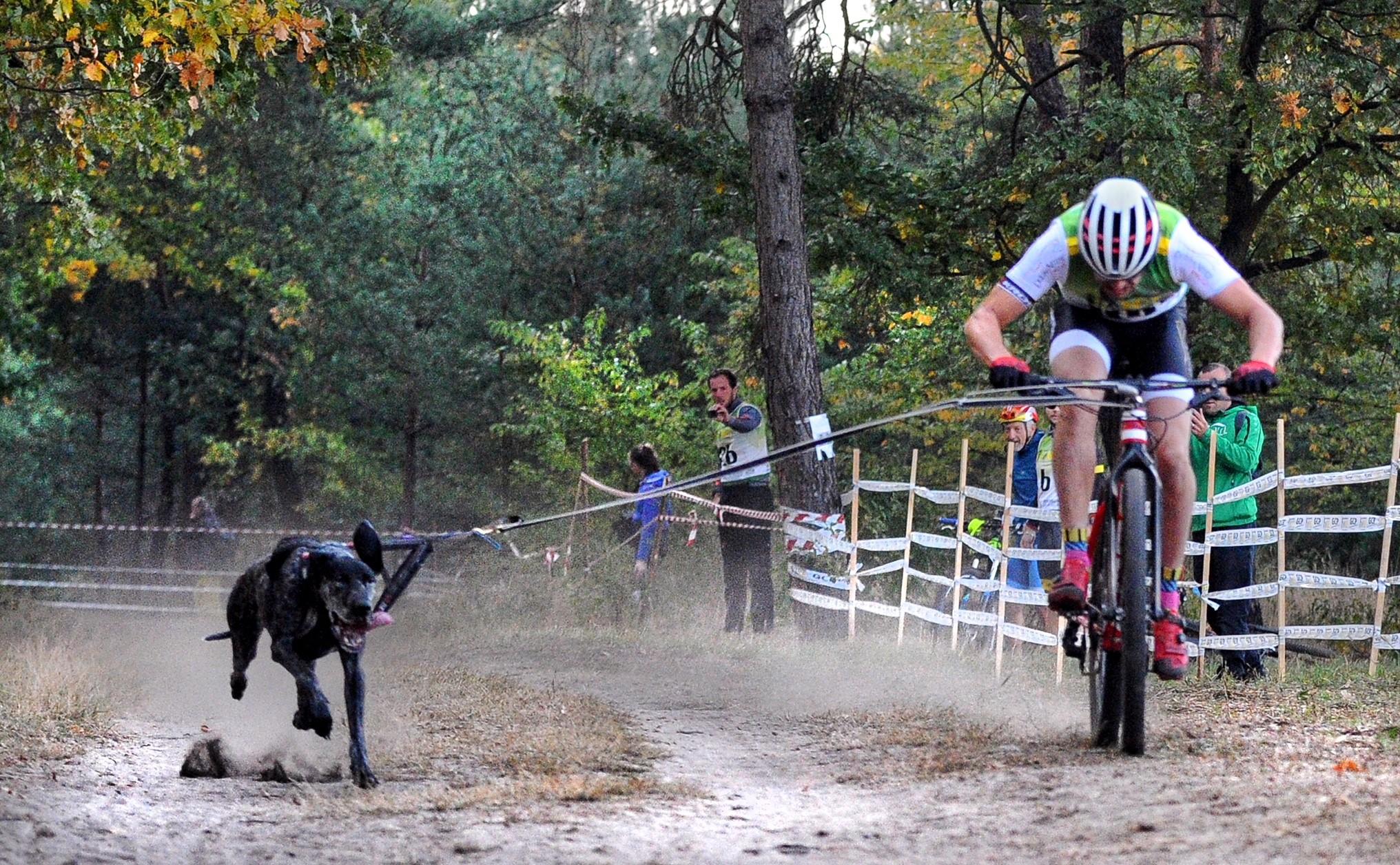 Igor Tracz po raz trzeci został mistrzem świata w bikejoringu
