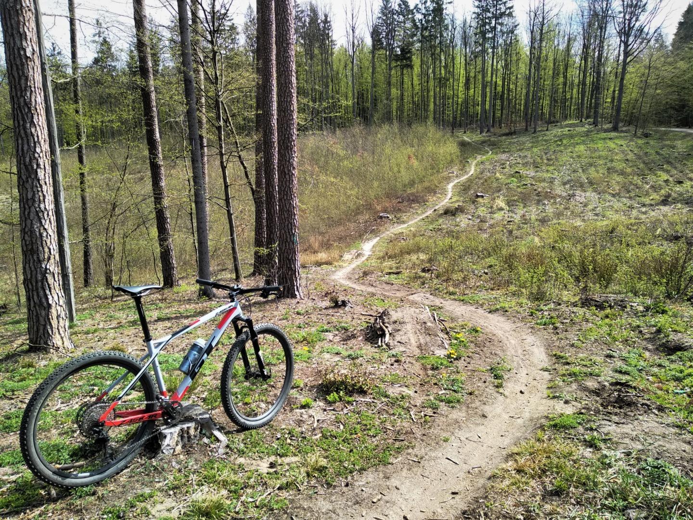 Szczytno MTB Trails – naturalnie mazurskie single tracki