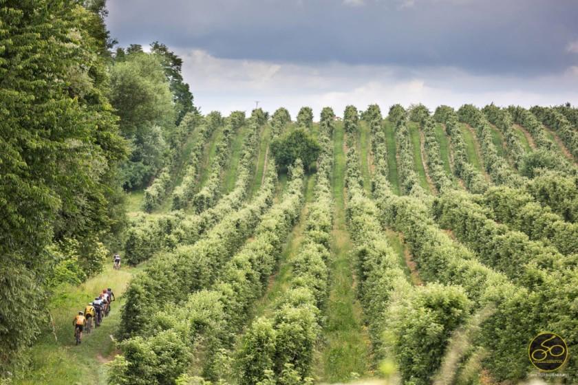 Cyklokarpaty #5 – Na Sandomierskim Szlaku Jabłkowym