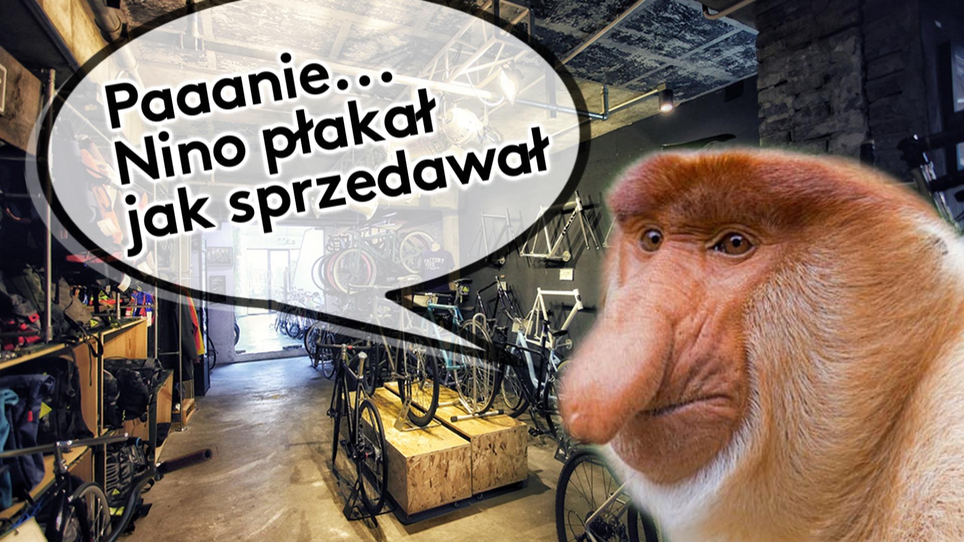 Jak kupować nowy rower górski? – Prawie poradnik zakupowy.