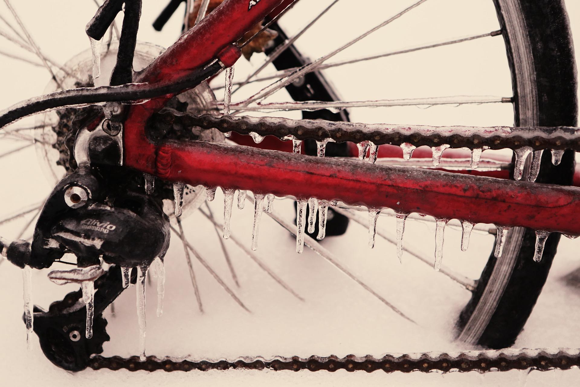 Kiedy zima jest długa, a rower tylko jeden